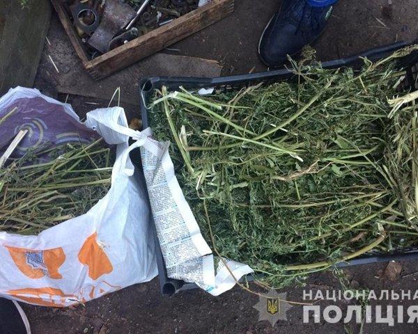 Правоохоронці знайшли у кропивничанина близько 10 кілограмів марихуани (ФОТО)